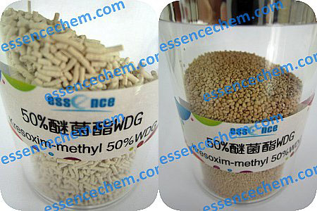 Kresoxim-methyl-500-WDG-ball-fungicide