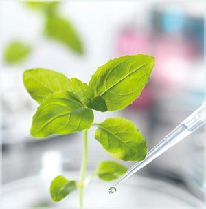 Essence-pesticide-R&D-lab